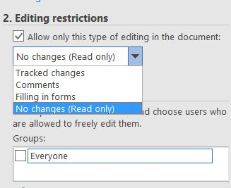 Word document editing constraints