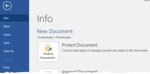 Word document protection info