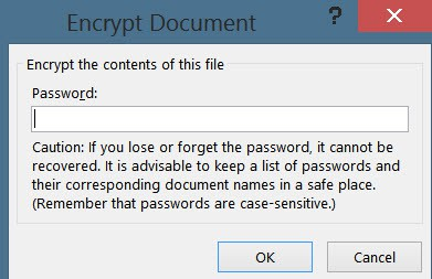 Word document encryption
